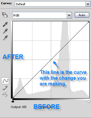 The Curve Dialog Box Before Any Changes are Made