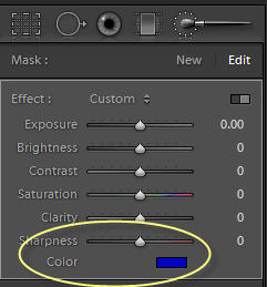 Adjustment Brush Color Setting