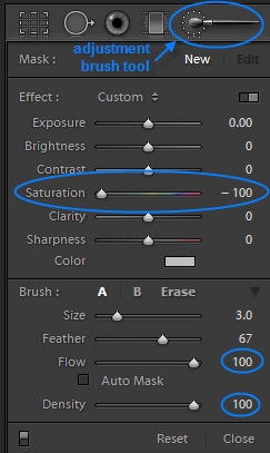 Adjustment Brush Settings