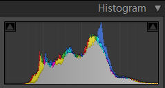 Histogram after Processing